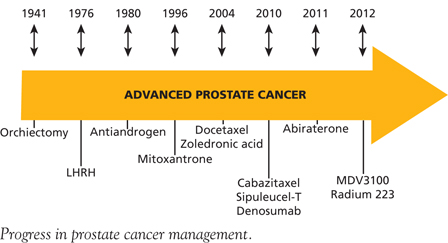 Prostate_Fig01